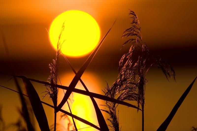 Kiek tiksliai metrų yra nuo Žemės iki Saulės?