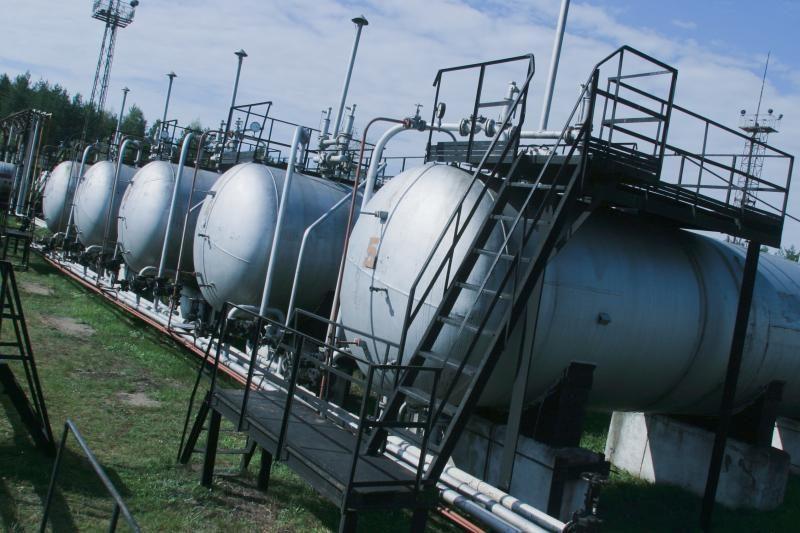 """""""Dujotekanos"""" prezidentas: dėl dujų kainų turi derėtis įmonės"""