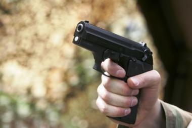 Pas Švenčionių rajono gyventoją aptiktas įtartinas ginklas
