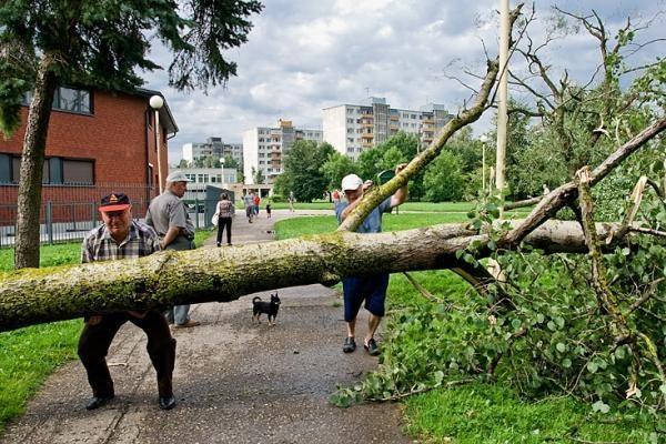 Trakų rajono savivaldybė nukentėjusiems nuo škvalo skyrė 34 tūkst. litų