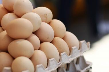 Paukštynus džiugina auganti kiaušinių paklausa