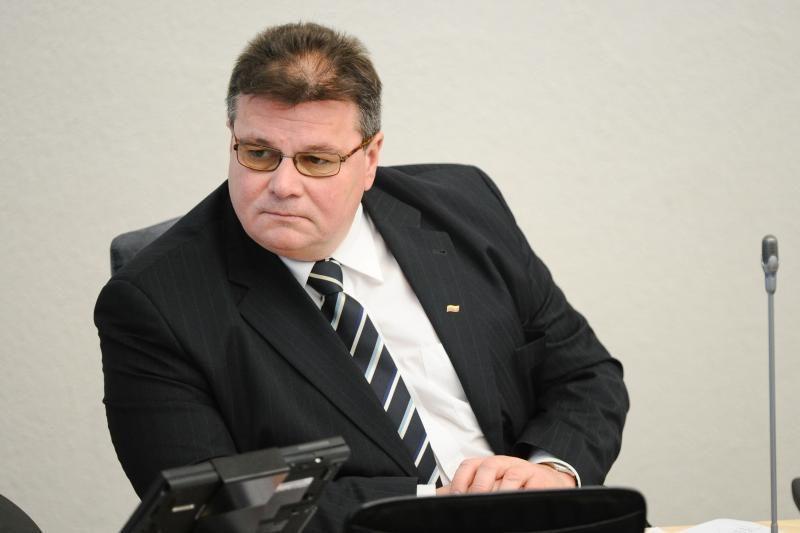 Rusijos kuriamą Eurazijos sąjungą Lietuvos ministras vertina rimtai