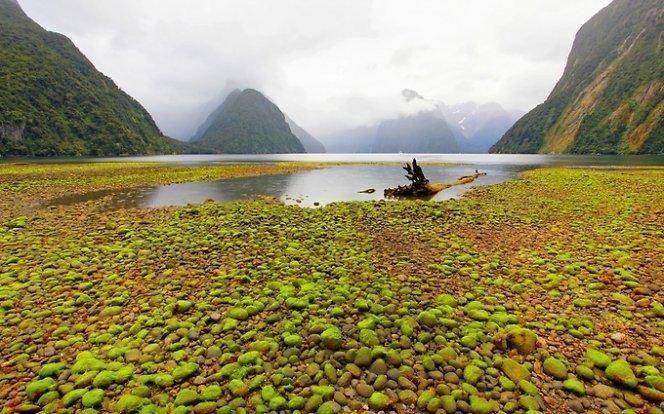 Valdininkai už kelionę į N.Zelandiją iš savo kišenės nemokės
