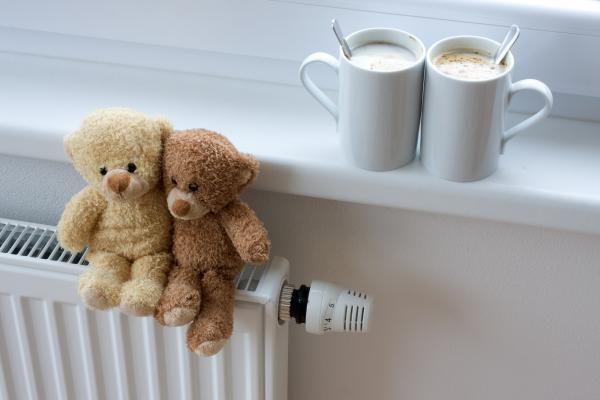 Energetikos inspekcija pradėjo tyrimą dėl šildymo sąskaitų