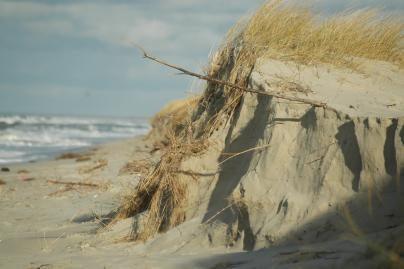 Pajūrio smėlį suteršė nafta