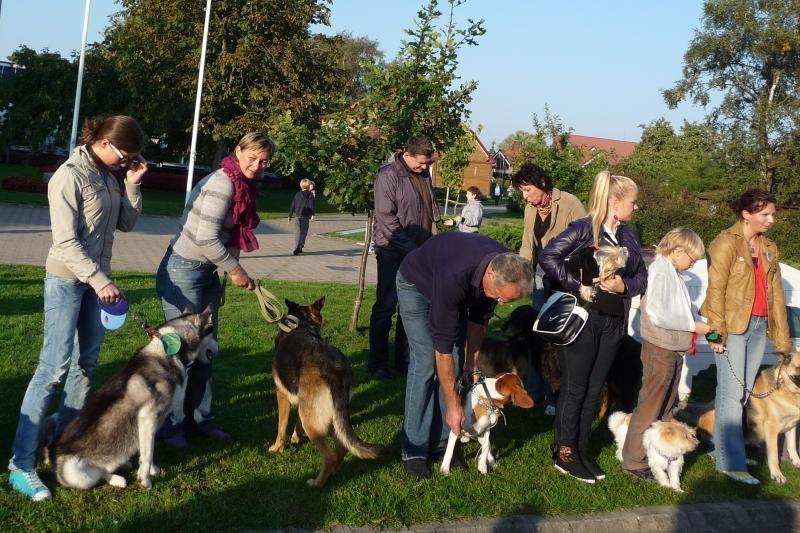 Neringos kasdienybę nuspalvins nemokama šunų paroda-šventė