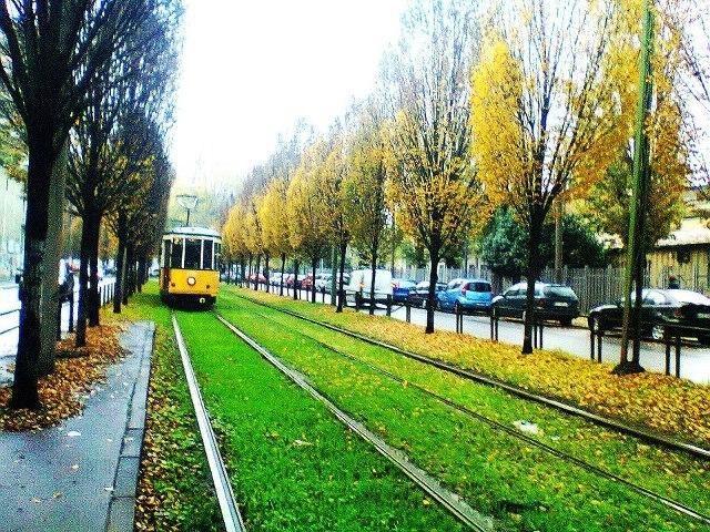 Milano tramvajuose leista vežtis dviračius