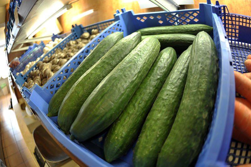 Energija brangsta, daržoves šiltnamiuose gali auginti tik entuziastai