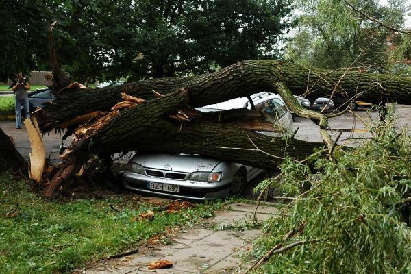 Sinoptikai: audros Lietuvoje siaus dažniau ir bus dar baisesnės