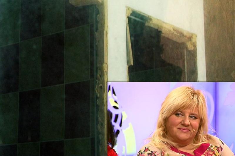 D. Bilevičiūtę ištiko šokas išvydus  jos svajonių sodybos  griuvėsius