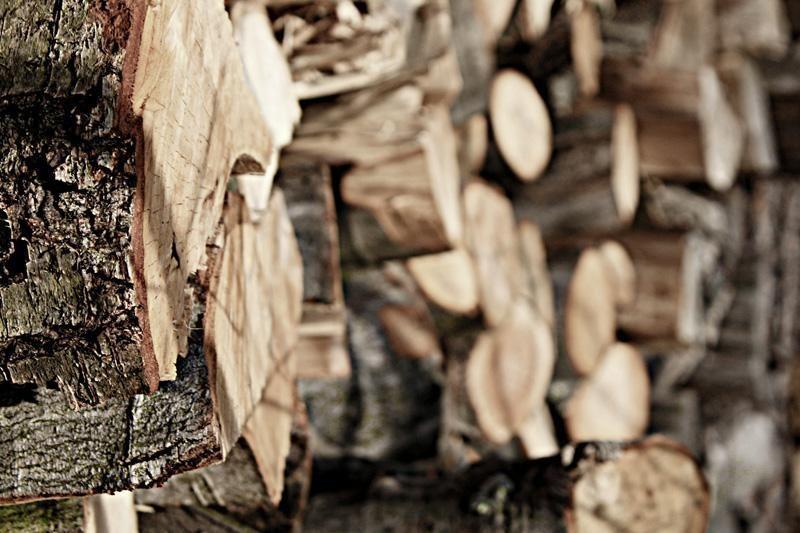 Medžio anglies gamintojų planuose – kelios naujos gamyklos