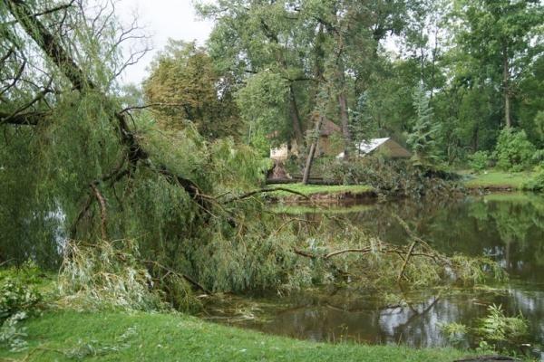 Atkurti elektros tiekimą trukdo išvirtę medžiai, nepravažiuojami keliai (papildyta)