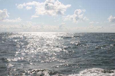 """Bengalijos įlankoje """"pradingo"""" sala"""