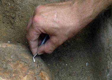 Piliavietės radiniai stebina archeologus