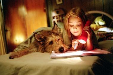 Dėl knarkimo gali būti kaltas šuo
