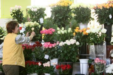 Vilnius turės dar vieną gėlių turgų