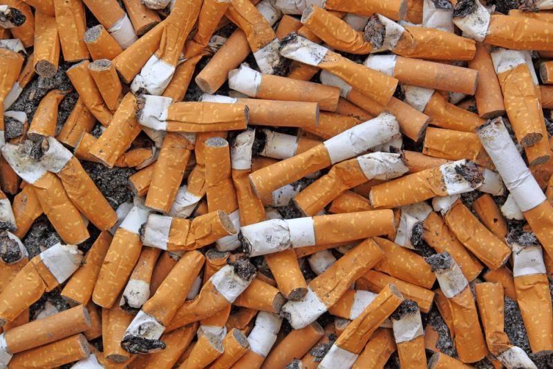 Kokią žalą gamtai daro cigarečių nuorūkos?