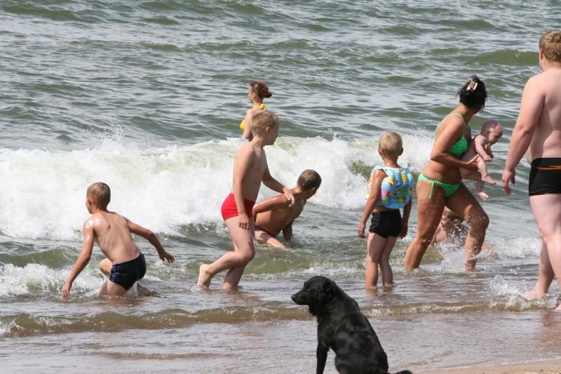 Klaipėdos paplūdimius siūlo pritaikyti ir žmonėms, ir šunims
