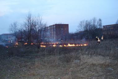 Klaipėdoje siautėja žolės degintojai