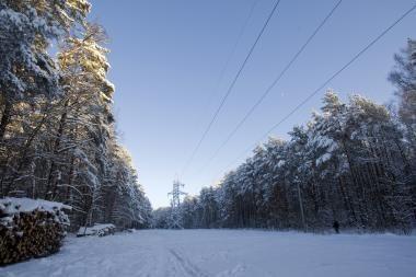 Šilutės rajono kelyje – mirtinai sušalęs vyras
