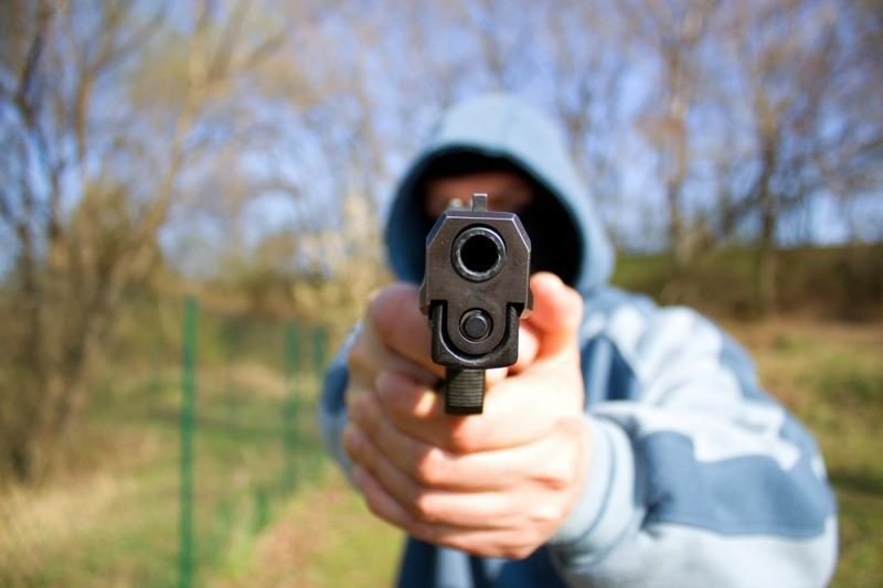 KT vertins įstatymo nuostatas dėl leidimo nešioti ginklą