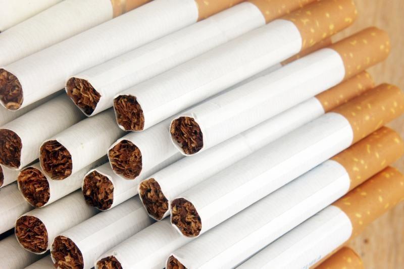Sodininkų bendrijoje aptiktas kontrabandinių cigarečių sandėlis
