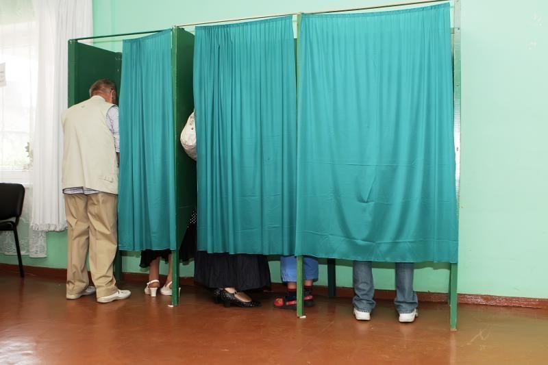 Seimo rinkimai: klaipėdiečiai pasirinko pliažą (papildyta 19.25 val.)