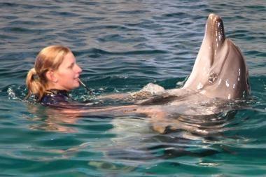 Delfinų terapijos centro Klaipėdoje teks palaukti