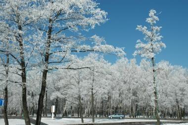 Kai kuriuose Lietuvos rajonuose - 20 laipsnių šaltis