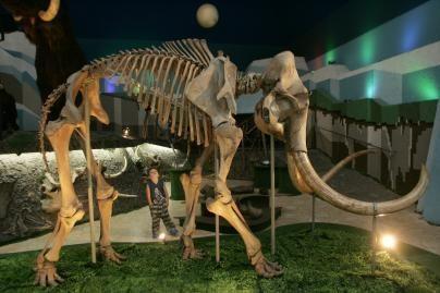 Statybininkai atkasė mamutą