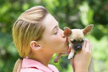 10 keisčiausių daiktų, kuriuos prarijo šunys
