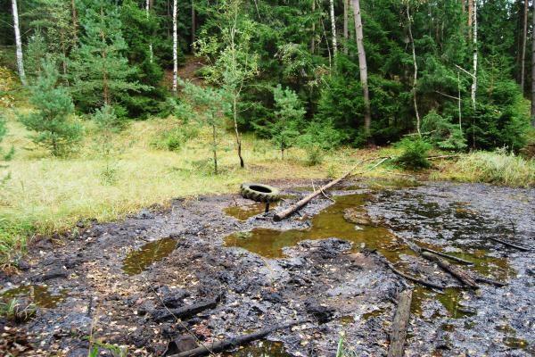 """Kretingos r. miške - didelis naftos produktų """"ežeras"""""""