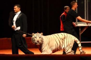 Cirkus su gyvūnais reikia uždrausti