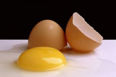 Kazachstane višta padėjo milžinišką kiaušinį