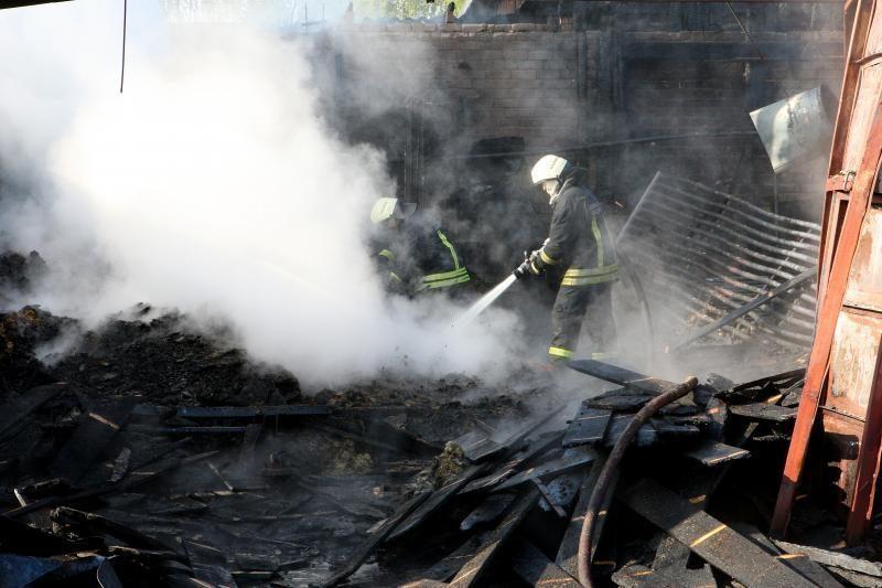 Gaisruose Pasvalio ir Šakių rajonuose žuvo du žmonės