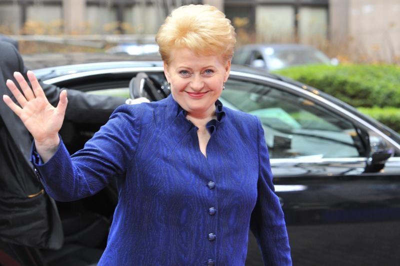 Prezidentė sveikina Vyriausybės siekį įvesti eurą 2015 metais