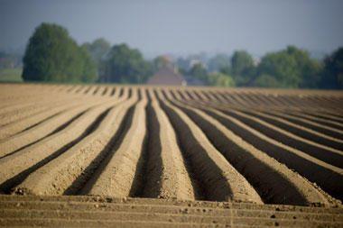 Laukiama jaunųjų ūkininkų mokėjimo prašymų