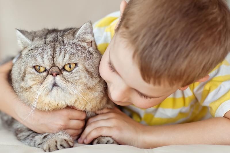 Vengrijoje kačių mylėtojai renkasi specialiose kavinėse