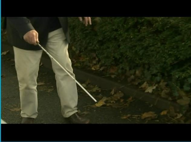 Pareigūnai aklo pensininko baltąją lazdelę palaikė samurajaus kardu