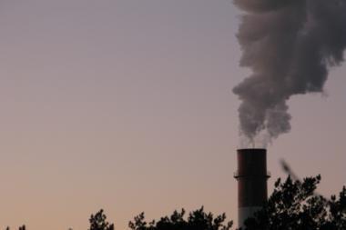 Lazdynų gyventojai kovoja prieš atliekų deginimo gamyklą