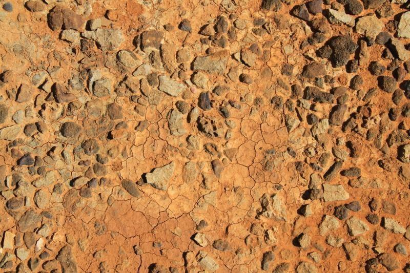 JAV parduota Tisinto meteorito dalis iš Marso