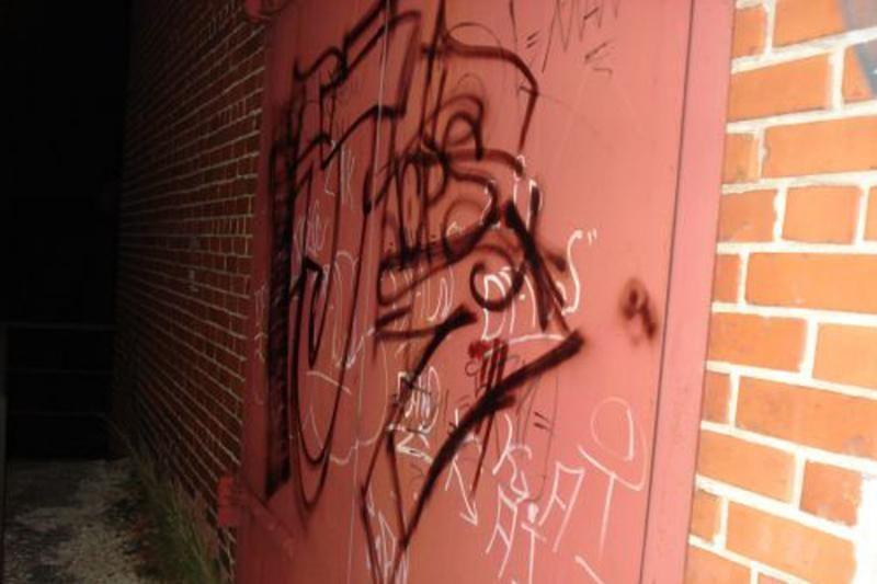 Sostinės policijai įkliuvo grafičių piešėjas