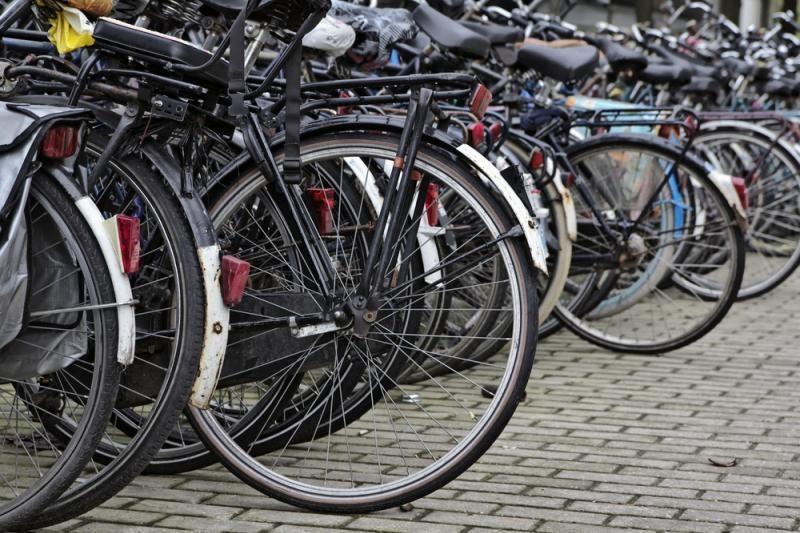 Druskininkų savivaldybėje žuvo dviratininkas