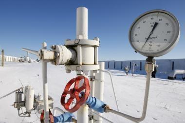 Europa bandys įveikti dujų krizę