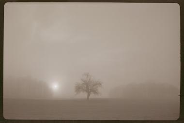 """Klaipėdiečio fotomenininko """"Šviesos kaligrafija"""" – Panevėžyje"""