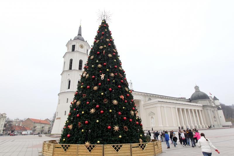 Katedros aikštėje baigta puošti Kalėdų eglė