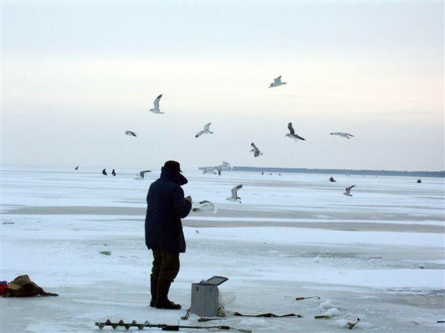 Nuteistas elektros prietaisu žuvis gaudyti ketinęs žvejys