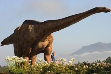 Dinozaurai buvo aukštesni nei manyta