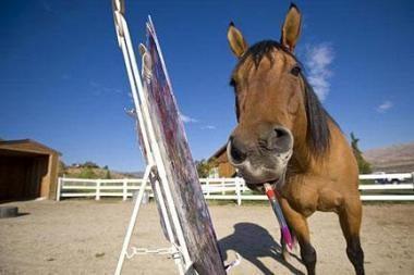 Arklio tapytus paveikslus perka kolekcionieriai