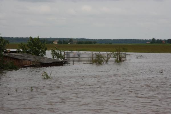 Šilutės rajone prasidėjo potvynis
